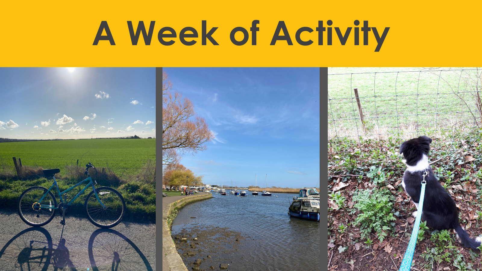 A Week of Activity: Why we are doing it and how to get involved